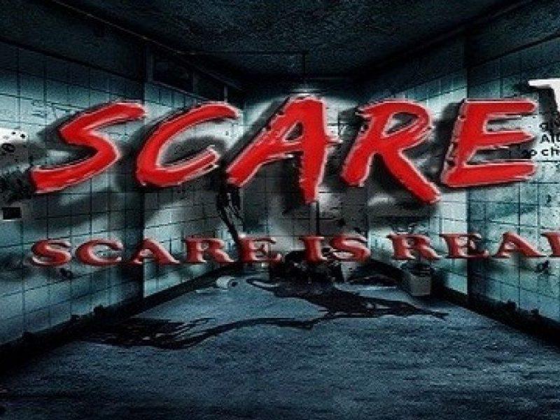 تردد قناة سكار تي في Scare TV 2020 الجديد الفضائية علي القمر الصناعي نايل سات